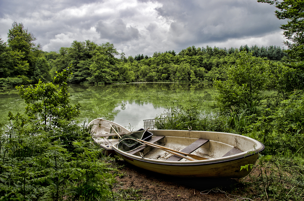 Dense nature, two boats and swamp