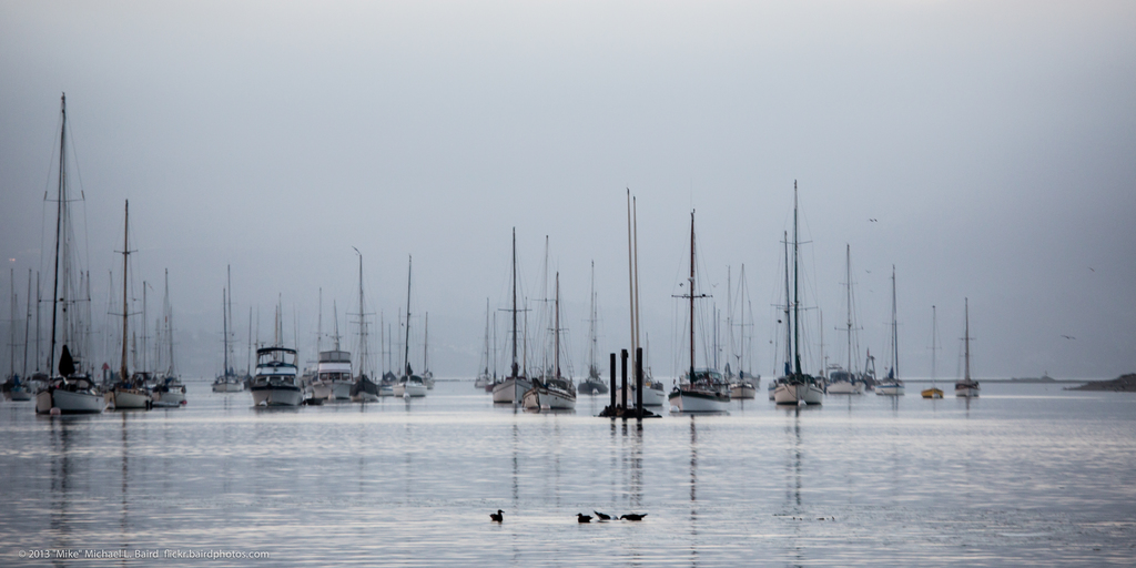 Minimal image of a harbor scenery for moored boats in Morro Bay