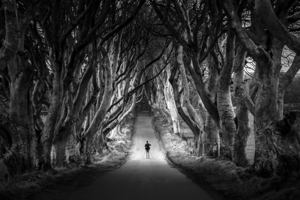 The photographer at the dark hedges northern ireland